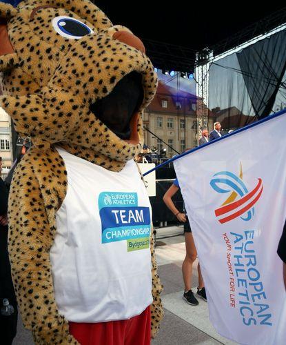 Vier Hessen für die Team-EM in Bydgoszcz